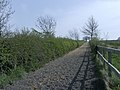 Equine training facility looking up Cheescake Hill - geograph.org.uk - 400413.jpg