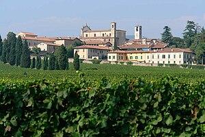 Franciacorta - Franciacorta vineyard in Erbusco