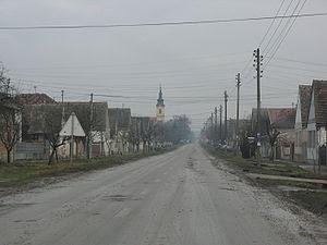 Erdevik - Main street in Erdevik