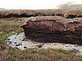 Eroded peat, Riccart Law Rig - geograph.org.uk - 441538.jpg