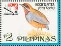 Erythropitta kochi 1994 stamp of the Philippines.jpg