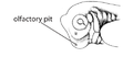 F1. Olfactory placode (V06a).png