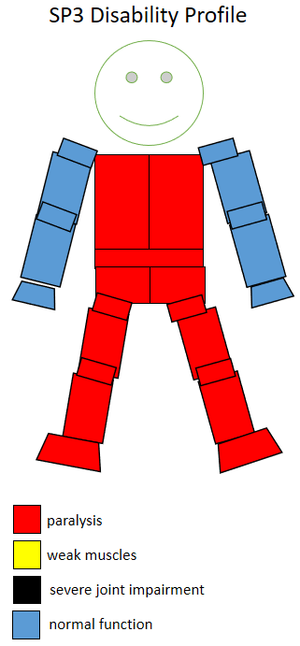 T52 (classification) - Functional profile of a wheelchair sportsperson in the F3 class.