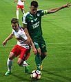 FC Liefering gegen WSG Wattens (19. Mai 2017) 48.jpg
