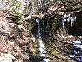 Fall Run Park in Shaler Township, late winter - 14.jpeg