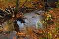 Fall at Rouge Valley (10279302955).jpg