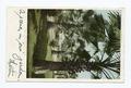 Fan Palms, California (NYPL b12647398-67759).tiff