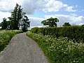Farm Track North of Shepshed - geograph.org.uk - 1340212.jpg