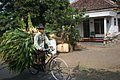 Farmer on bicycle in Indonesia.jpg