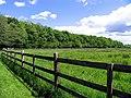 Farmland between Woodspeen and Bagnor - geograph.org.uk - 12195.jpg
