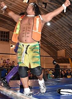 El Felino Mexican professional wrestler