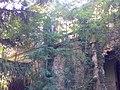 Felső Fekete-kastély - panoramio (11).jpg