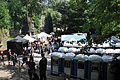 Feuertal 2013 Mittelaltermarkt 062.JPG