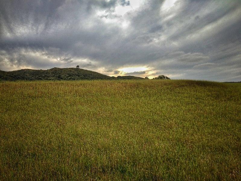 File:Field in Menorca.jpg