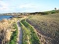 Fields and path, Orlock - geograph.org.uk - 1839713.jpg