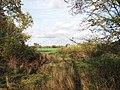 Fields west of Brooke Wood - geograph.org.uk - 1565914.jpg