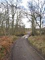 Flaggy Ford - geograph.org.uk - 619083.jpg