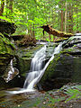 Flickr - Nicholas T - East Branch Falls (Upper Part) (1).jpg