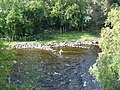 Fly fishing in the River Ewe - geograph.org.uk - 49810.jpg