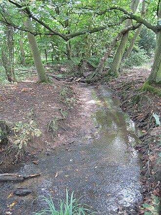 Folly Brook - Folly Brook
