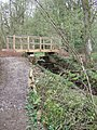Footbridge in the Woods - geograph.org.uk - 156031.jpg