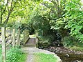 Footbridge on the way to Lleiniau Hirion - geograph.org.uk - 1292659.jpg