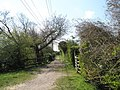 Footpath along the old tramway - geograph.org.uk - 758744.jpg