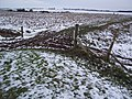 Footpath and Track junction in Allhallows Marshes - geograph.org.uk - 1628420.jpg