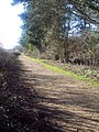 Footpath from Drove End Carpark - geograph.org.uk - 325527.jpg