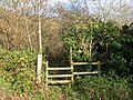 Footpath stile, Wrington - geograph.org.uk - 1051874.jpg
