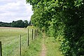 Footpath to Dunk's Green - geograph.org.uk - 1358445.jpg