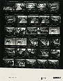 Ford B1112 NLGRF photo contact sheet (1976-08-18)(Gerald Ford Library).jpg