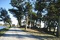 FortJackson3Nov2008SRoad.jpg