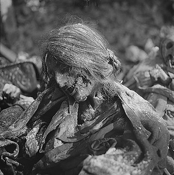 Body of a woman who died in an air-raid shelter Fotothek df ps 0000123 Frauenleichnam in einem Luftschutzkeller.jpg