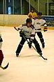 Four-Nation Hockey Tournament 8 (4397137667).jpg