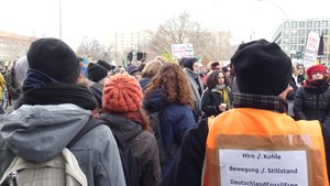 Файл:FridaysForFuture Demonstration 25-01-2019 Berlin 97.webm