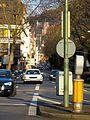 Friedrich-Ebert-Anlage Heidelberg Blick auf das Heidelberger Schloss.jpg
