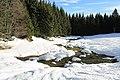 Fruitières de Nyon in winter - panoramio (48).jpg