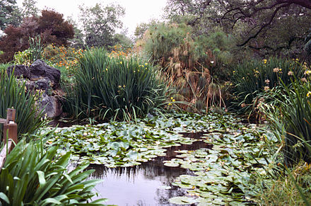 Los Angeles County Arboretum and Botanic Garden - Wikiwand
