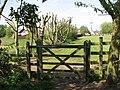 Gate onto the green - geograph.org.uk - 1267582.jpg