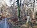 Gedenkstein für Bebenhäuser Forstmeister Fr. Aug. von Tscherning (2013) - panoramio.jpg