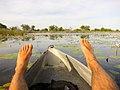 Genieten van een tochtje in de Mokoro door de Okovango Delta (6558965609).jpg