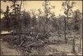 Georgia, Atlanta Battlefield, July 22, 1864 - NARA - 533409.tif