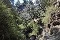 Ghorepaani Ghandruk Trail 3.jpg