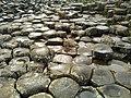 Giant's Causeway Basalt Columns.jpg