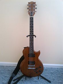 Gibson the Paul Electric Guitar.jpg