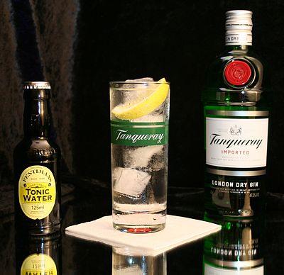 Gin Tonic 2.jpg