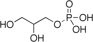 chemical structure of glycerol-3-phosphate