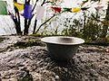 Gods own bowl.jpg
