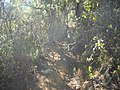 Going to the Vale Encantado^ - panoramio (1).jpg